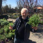 Carlo Pagani, maestro giardiniere, ci racconta le botaniche del gin
