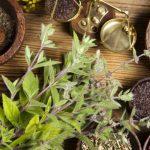 La top ten delle botaniche più insolite