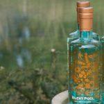 I gin del Gin Day: Silent Pool, il gin a kilometro zero