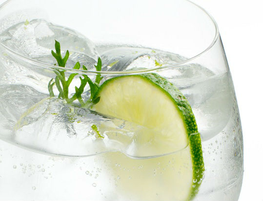 I Gin Tonic ci sono in ogni forma e colore... provatene uno fatto per bene!