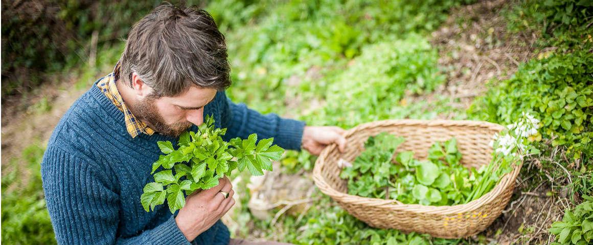Foraging: l'arte del cercare e raccogliere i propri ingredienti