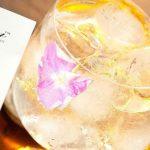 I gin del Gin Day: Geranium 55 scaccerà anche le zanzare?