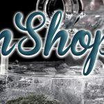 GinShop.it: il primo e-commerce italiano dedicato al gin
