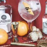 Feste a tema gin? Ecco i consigli per un party gintastico!
