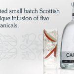 Caorunn è il gin più venduto in Scozia e supera Hendrick's!