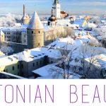 Estonian Beauty Competition: crea il tuo cocktail che esprima la bellezza dell'Estonia!