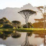 Sudafrica per gin lovers