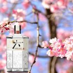 Gin Giapponesi: Roku Gin ed Etsu Gin a confronto