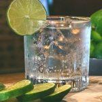6 London Dry Gin dal mondo da provare