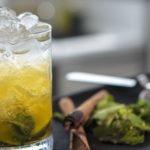 Gin Mint Julep - Iberican edition