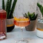 Elephant Sloe Mezcal: l'edizione limitata che unisce gin e mezcal