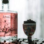 AmaGin: il connubio perfetto tra il Gin, il Vino Amarone, il Teatro e l'Arte