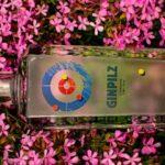 Gin Pilz, il gin trentino nato bevendo nel mondo
