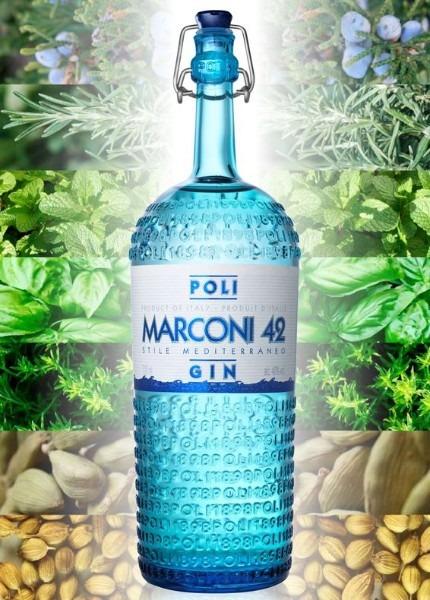 poli gin marconi 41