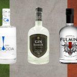 5 London Dry Gin tutti italiani da provare