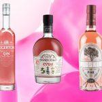 I 5 Pink Gin da provare perché diversi da tutti gli altri