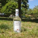 Gin Tassoni, il gin nuovo che arriva da una ricetta antica