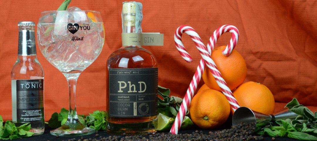phd gin 1
