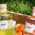 June Wild Peach Gin e June Royal Pear Gin by G'Vine: i nuovi gin dell'estate