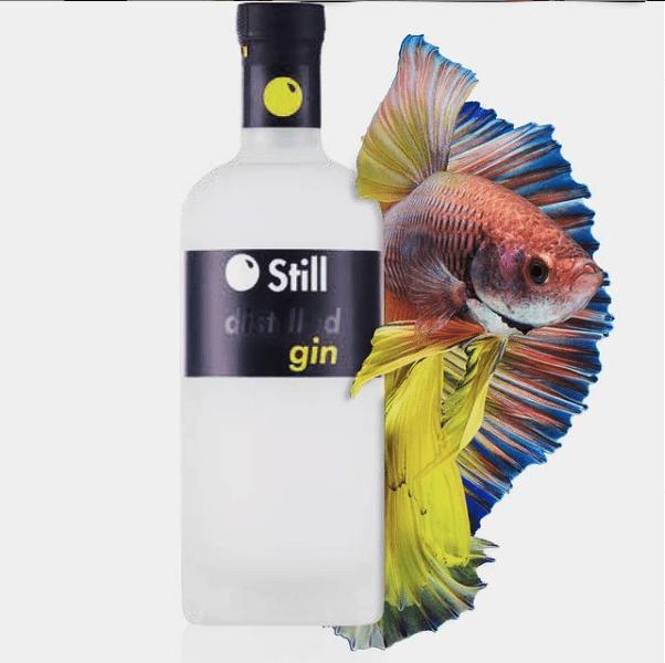still gin