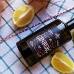 Gin Ginberg, l'artigianalità e la passione in un gin autenticamente italiano