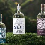Come salvare farfalle e scarafaggi bevendo gin: Papillon Gin e Carabus Gin